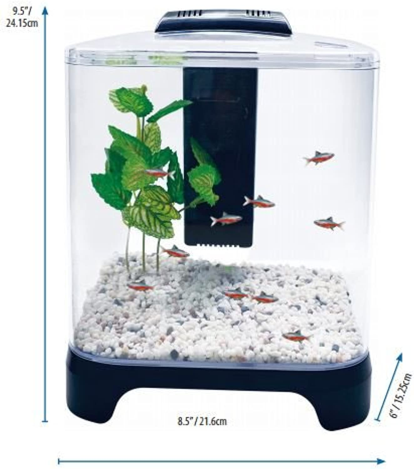 Tank Fish Aquarium Gal 1 5 Products Pet Paws American W Of Kinds All
