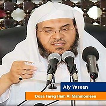 Doaa Fareg Ham Al Mahmomeen
