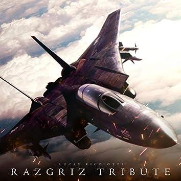 "Razgriz Tribute (""Ace Combat 5"" Fanmade)"