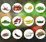 Chili Seed Set | 12 variedades de semillas de chile desde picante a suave | Set de cultivo con Chili Premium- Semillas naturales | fácil de cultivar/cultivar para el jardín y el balcón