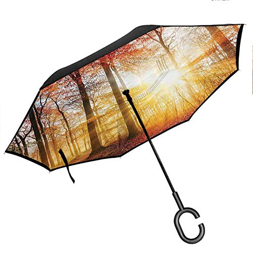 Scenery Decor Upside Down Umbrella with C-Shaped Handle Misty Autumn View with Vibrating Sunbeams Lights Leak Through Trees in The Forest Orange
