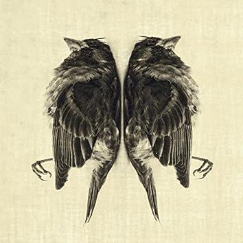 The Dead Bird EP