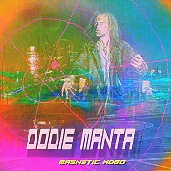 Magnetic Hobo
