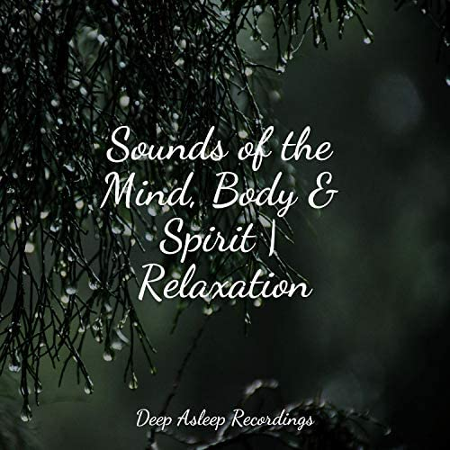 Calming Sounds, Monarch Baby Lullaby Institute & Guided Meditation Music Zone