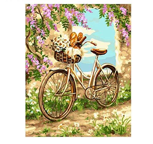 ABUKJM DIY Digital Painting by Numbers Kits für Erwachsene Anfänger Kinder Fahrrad in Flower Lake Landschaft mit Kombination 40x50cm gerahmt