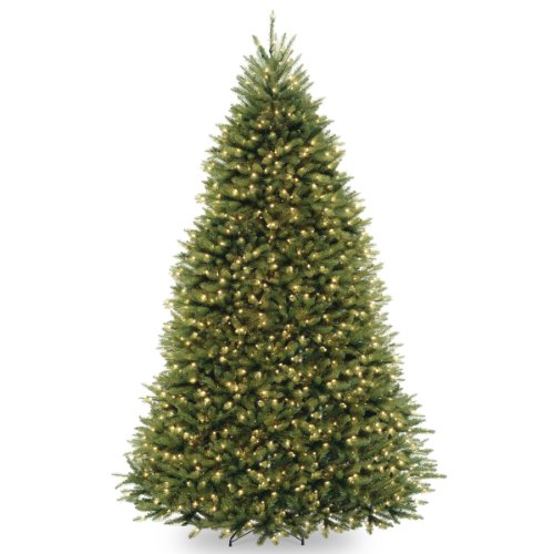 National Tree Company Pre-lit Artificial Christmas Tree | Includes Pre-strung White Lights and Stand | Dunhill Fir - 9 ft