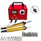 Legno brucia pirografia penna kit, 220V 100W professionale pirografia Machine kit Craft Wood Burning carving con 2PCS pirografia penna, 30Pcs punte Pirografo