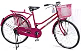 Road Master MTB Series Cycle, Pink
