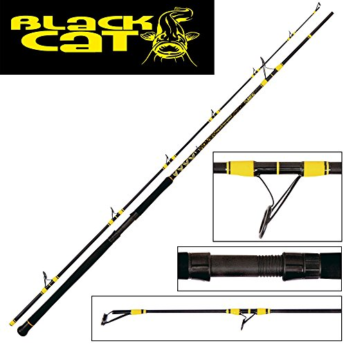 Black Cat Uni Passion PRO DX Spin – Canna da Pesca, Stand Art, One Size