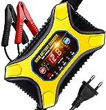 Cargador baterias Coche Moto AOKBON 12A 6V/12V Cargador Rápido Múltiples Protecciones para Automóviles Motos ATVs RVs Barco