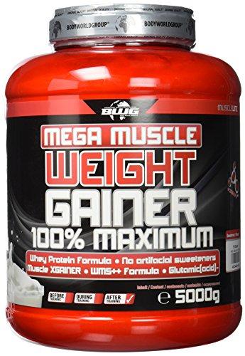 BWG Mega Muscle Weight Gainer 100{799e076d908436683cc9469da044a117635ecf72ee89c5178d4549adac9d3150} Maximum - perfekt für HardGainer und Massephasen – Kraftaufbau - Mega Strawberry - Dose mit Dosierlöffel - (1x 5000g Dose)