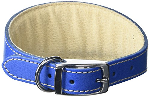 BBD Pet Products - Collare per Whippet, taglia unica, 3/4 x 30 a 40 cm, Royal