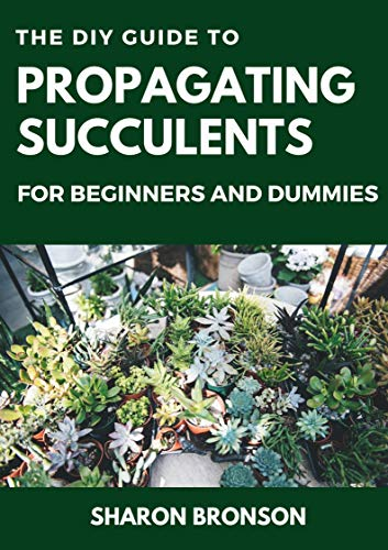 The DIY Guide To Propagating Succulents For Beginners and Dummies: Step by Step Manual to Successfully Setting up Succulents Garden