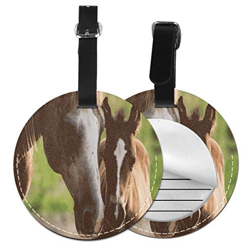 Luggage Tags Horse Mare Suitcase Luggage Tags Business Card Holder Travel ID Bag Tag