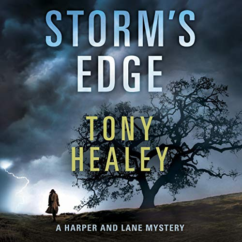 Storm's Edge  By  cover art