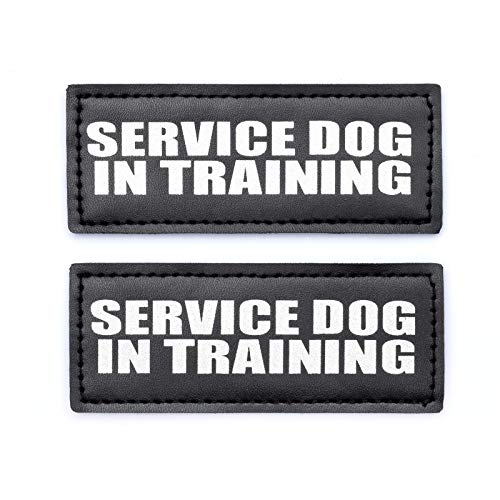 Industrial Puppy Hook Patches for Harness - Service Dog, Emotional Support, in Training, Service Dog in Training, and Therapy Dog Patches (Service Dog in Training, SS - 4 x 1.6)