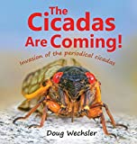 The Cicadas Are Coming!: Invasion of the Periodical Cicadas