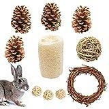 Hamster Kauspielzeug Set, 10 Stücke Natur Kleintiere Zahnpflege inkl. Grasball, Rattenball und -ring, Kiefernzapfen, Getrocknete Luffa Spielzeug für Kaninchen Meerschweinchen Ratten Chinchilla (Set 1)