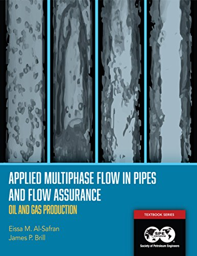 Applied Multiphase Flow in Pipes and Flow Assurance: Oil and Gas Production (English Edition)
