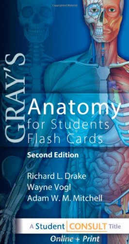Gray's Anatomy for Students ( Flash Cards )の詳細を見る