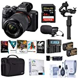 Sony Alpha a7 III Mirrorless Digital Camera with 28-70mm Lens Gimbal Bundle with DJI Ronin-S Essentials Kit, Bag, 64GB SD Card, 2 Batteries, Charger, Mic, and Accessories
