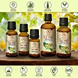 Zoom IMG-1 tea tree oil puro e