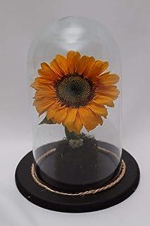 Flor Rehidratada//Deshidratada (Girasol)//Flor eterna