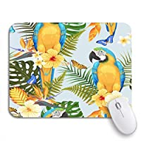 Mabby マウスマット - 240 x 200mm,Blue Pattern Macaw and Flowers Green Bird Brazil Butterfly,for Office and Gaming,Computer Mousepad Non-Slip Rubber Base