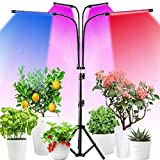 4-Head Grow Light for Indoor Plants, 84 LED Lamps Full Spectrum & Red Blue Spectrum, Gooseneck Floor LED Plant Light, 6 Dimmable Brightness, 3/6/12H Timer, Tripod Stand Adjustable 24.8-63Inch