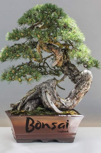 Bonsai: Logbook