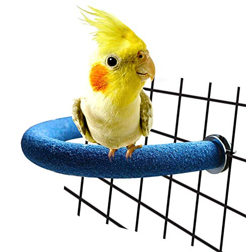 RYPET Parrot Perch Rough-surfaced - Quartz Sands Bird Cage Perches for Small Parakeets Cockatiels, Conures, Macaws, Parrots, Love Birds, Finches Cages Toy, U Shape