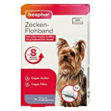 Zecken-Flohband Junior für Hunde | 8 Monate gegen Zecken & Flöhe | Mit SOS-Suchservice | Für Hundewelpen ab 12 Wochen | Farbe: Weiß | Länge: 60cm