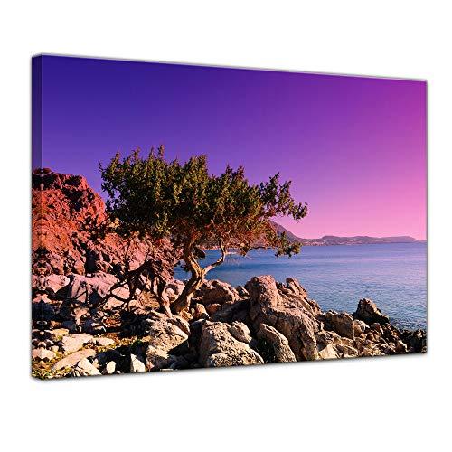 Bilderdepot24 Bild auf Leinwand | Mediterraner Baum auf Rhodos - Griechenland I in 40x30 cm als Wandbild | Wand-deko Dekoration Wohnung modern Bilder | 201789