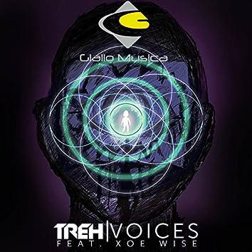 Voices (Original Mix)