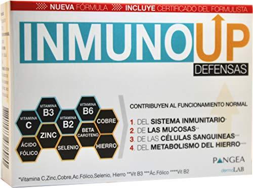 InmunoUP defensas | Ayuda a REFORZAR el SISTEMA INMUNOLÓGICO | Con VITAMINA C, B2,B3,B6, SELENIO, ZINC, HIERRO y + | ÚNICA Fórmula elaborada a Mano por Farmacéuticos | Fórmula 1 mes 30 cápsulas |