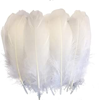 goose feathers for crafts