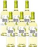 Cantarranas Verdejo, Vino Blanco D. O Rueda - 6 Botellas de 750 ml - (Total: 4.5 Lt)