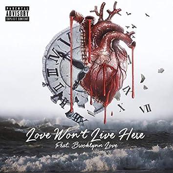 Love Won't Live Here (feat. Brooklyn Love)