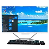 Baieyu All-in-One Computer,23.8' 1920x1080 FHD Display,Intel Core i7-10510U,16GB DDR4,512GB MSATA SSD,DVD RW Drive,Cámara Web,Altavoces,ratón y Teclado inalámbricos,WiFi/BT4.0/HDMI/VGA/LAN