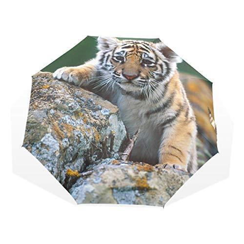 XiangHeFu Paraguas Cute Little Tiger 3 Pliegues Ligero Anti-UV