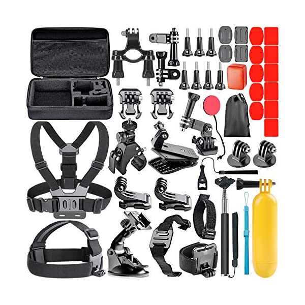 Neewer 44-in-1 Action Camera Accessory Kit, Compatible with GoPro Hero 4/5 Session,...