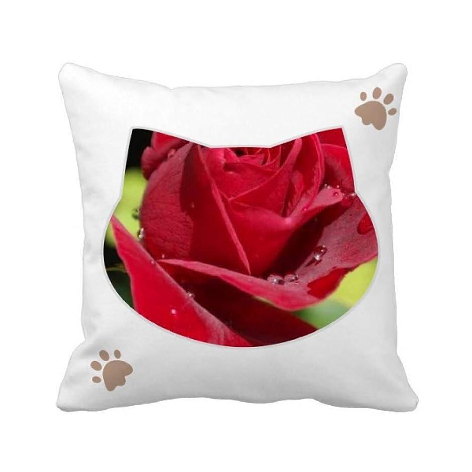 嘆くきつくノート暗赤色のバラの花 枕カバーを放り投げる猫広場 50cm x 50cm