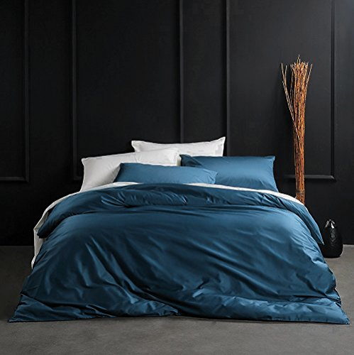 Eikei Solid Color Egyptian Cotton Duvet Cover Luxury Bedding Set High Thread Count Long Staple Sateen Weave Silky Soft Breathable Pima Quality Bed Linen (Queen, Ocean Teal)