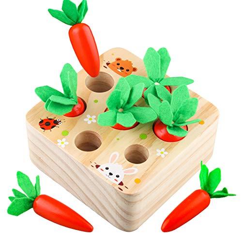 Sunarrive Möhren Holzspielzeug - Montessori Motorik Spielzeug - Motorikspielzeug - Lernspielzeug - Lernspiele - Pädagogisches Spiel Geschenk für Kinder Kleinkind ab 6 9 12 Monate 1 2 3 Jahre