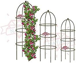 NAYAB Garden Obelisk Iron Trellis Rose Flower Supporter for Climbing Vines and Plants (Set of 3)