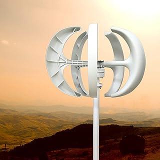 Kaibrite Generador de Turbina Eólica de 5 Palas Aerogeneradores 600W 24V Turbina de Linterna Blanca Generador de Energía Eólica con el Controlador.