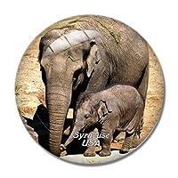 アメリカアメリカシラキュースロザモンドギフォード動物園冷蔵庫マグネットホワイトボードマグネットオフィスキッチンデコレーション