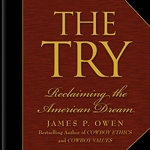 The Try audiobook cover art