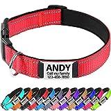 TagME Hundehalsband Mittel Hunde,Reflektieren Hunde Halsband mit Name und Telefonnummer,Rot M