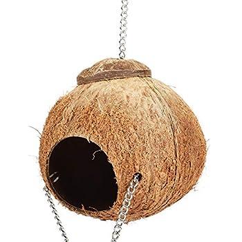 Nid D'Oiseau de Noix de Coco, Maison de Nid D'Oiseau Perroquet Naturel, Jouets de Grotte de Lit D'Oscillation avec L'éChelle Happy House Hut Pet Supply DéCoration de Maison